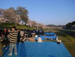 20090410花見.JPG