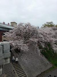リレー随筆写真(中尾) (2).jpg
