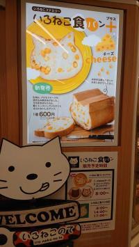 猫パン1(児子).JPG